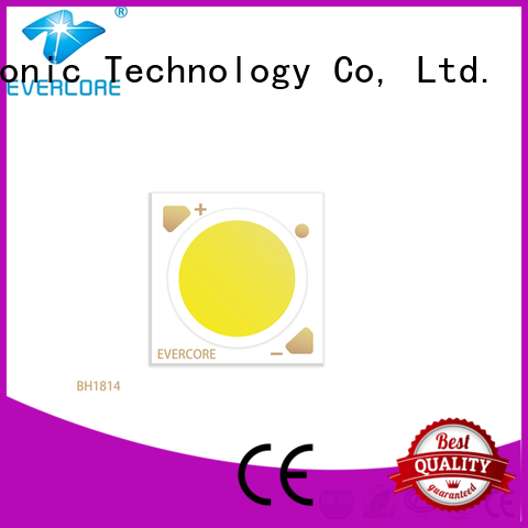 Evercore affordable led downlight kit factory for distribution