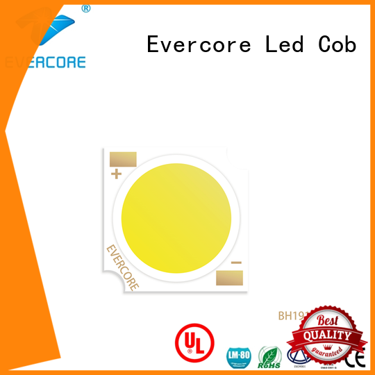 Evercore professional cob led light supplier for sale