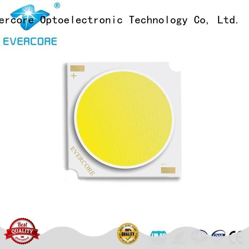 Evercore advanced technology best cob led grow light par for market