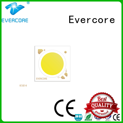 Evercore easy installation led color manufacturer for distribution