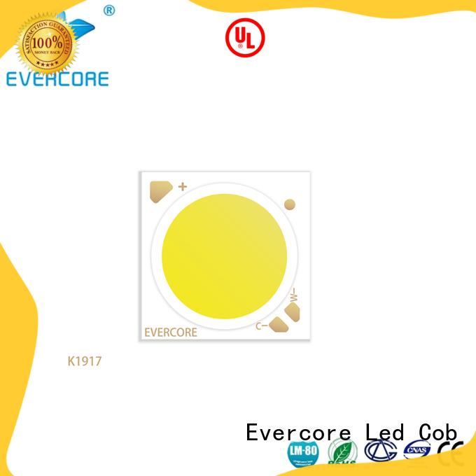 Evercore adjustable cob led module manufacturer for distribution