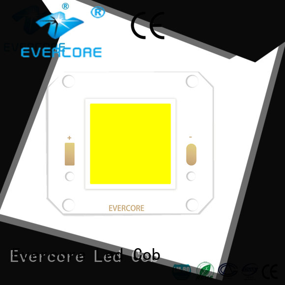 Evercore flood outside lights trader for importer