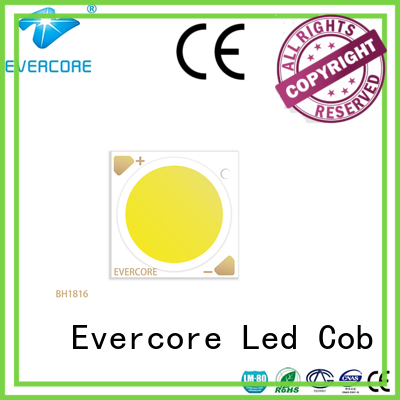 Evercore bh1917 led downlight kit customized for sale