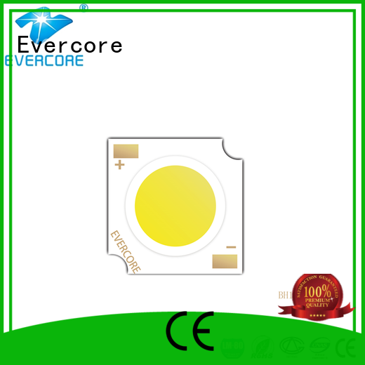 Evercore best smd led chip factory for sale