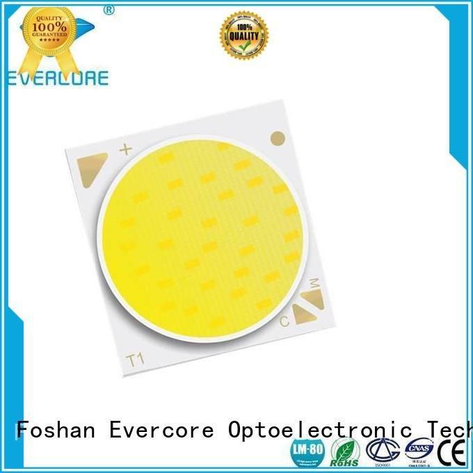 Evercore Brand cob led led two color led led