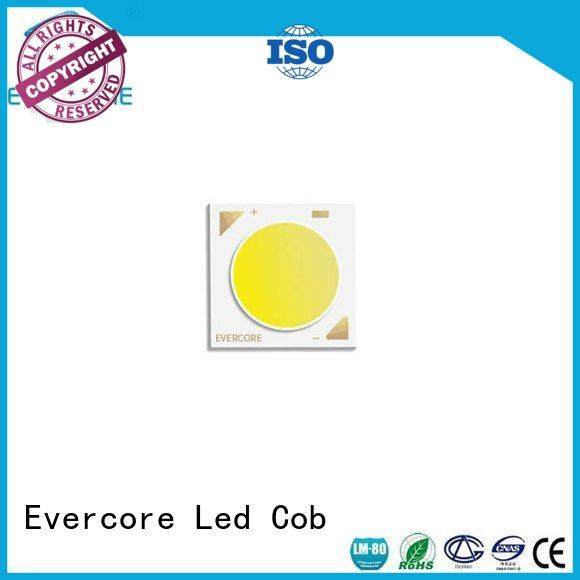 Evercore easy installation two color led supplier for wholesale
