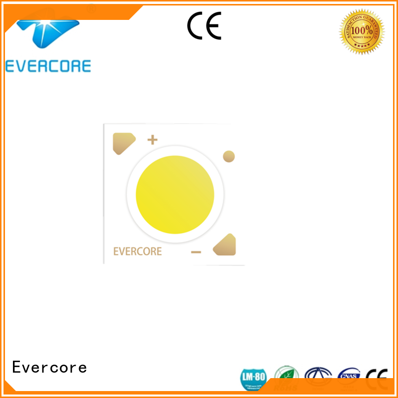 Low cost Cob Led light( factory for lighting