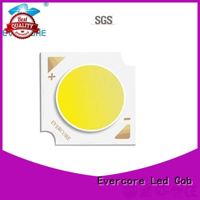 Evercore cheap Cob Led factory for sale