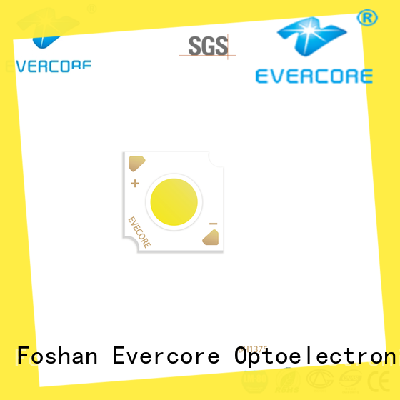 Evercore stable supply chip cob Asia company for dealer