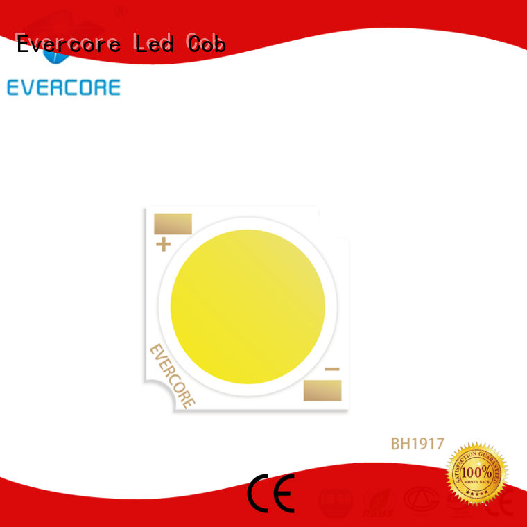 Evercore advanced technology led downlight kit customized for market