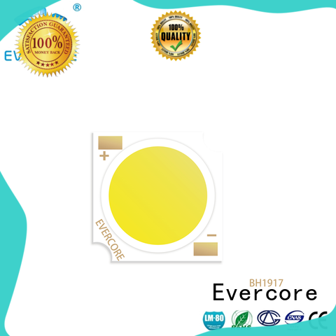Evercore high quality cob led light manufacturer for sale