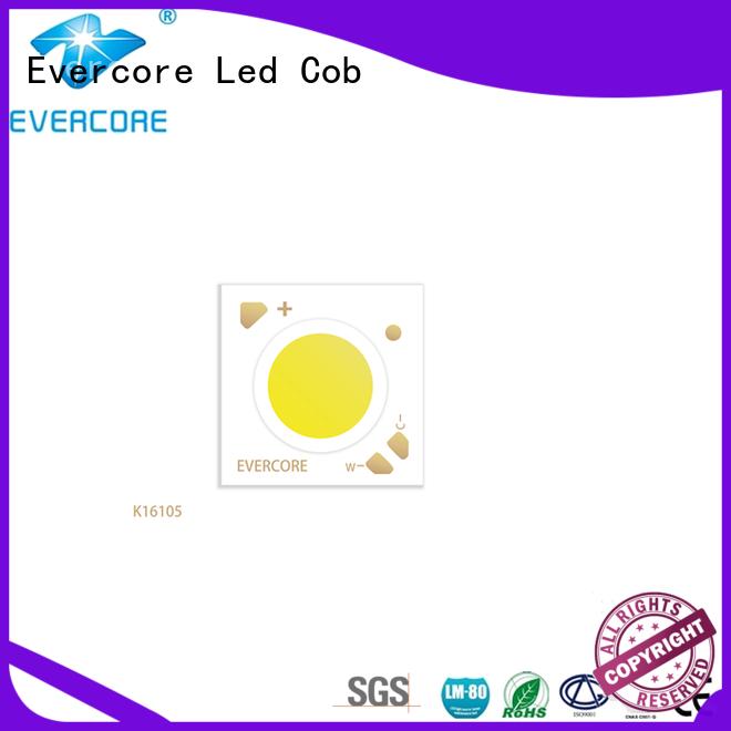 Evercore long lifespan cob led module supplier for sale