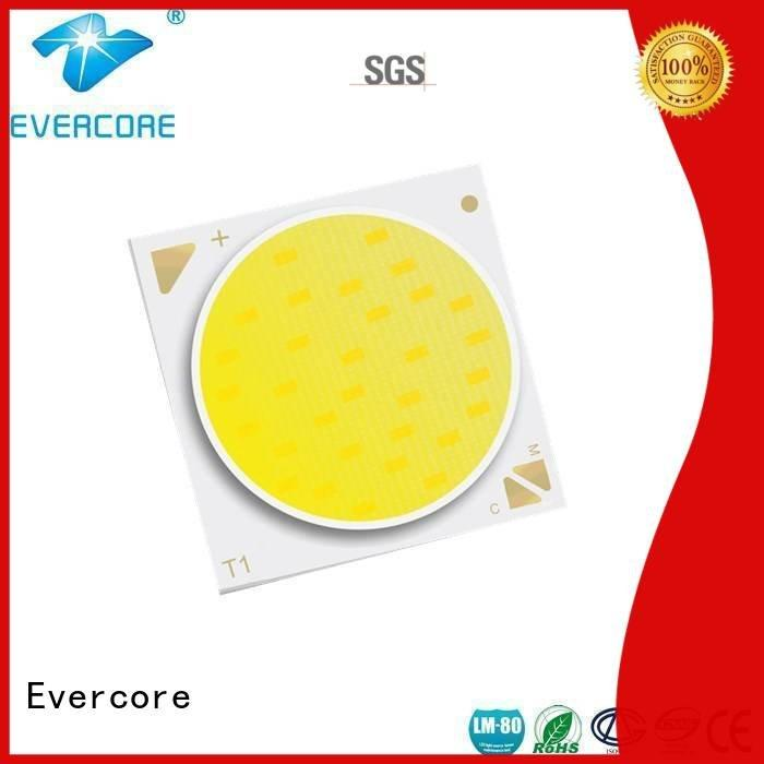 coloring led lights led Evercore Brand two color led