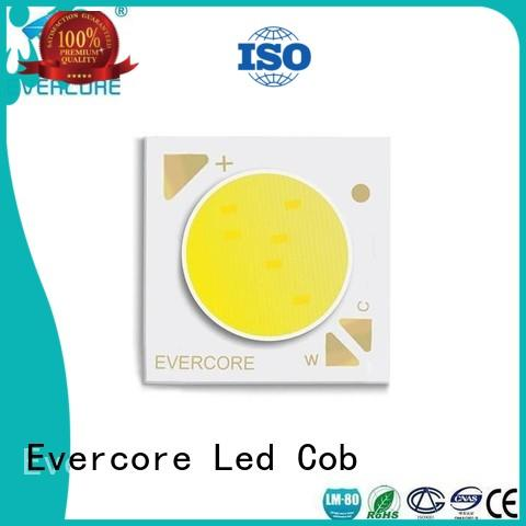 High reliability High CRI Evercore Brand coloring led lights