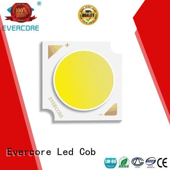 High CRI led cob led spot cob Evercore company