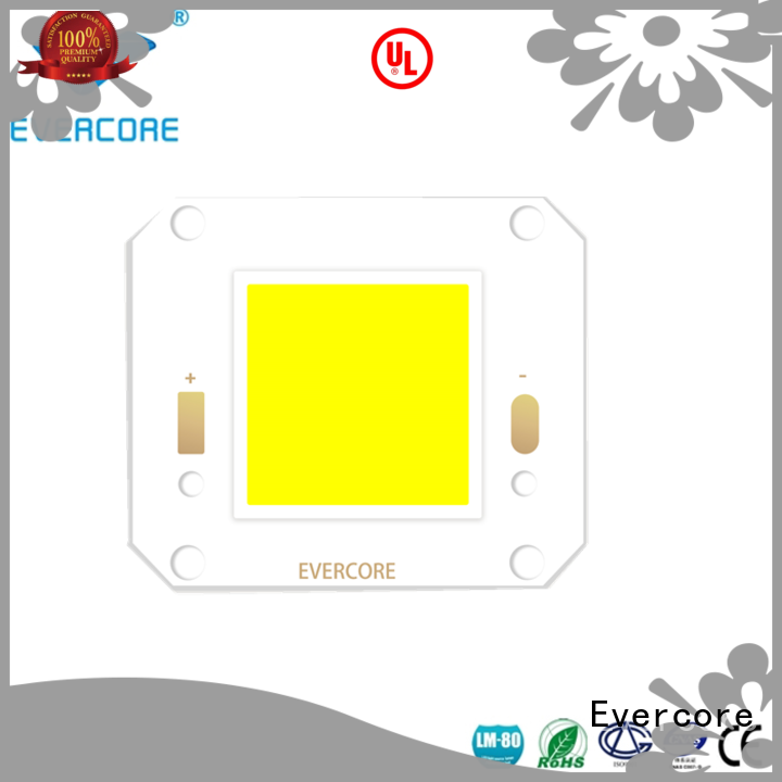 Evercore od3835 outside downlights led exporter for distribution