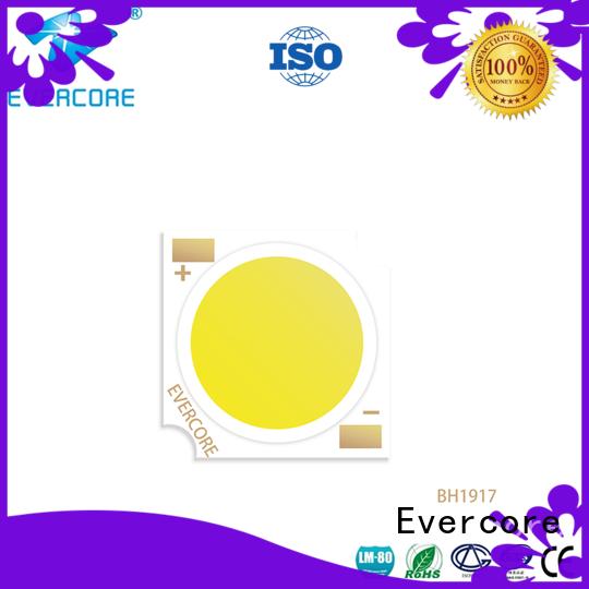 lamp Led Cob Chip supplier for lighting Evercore