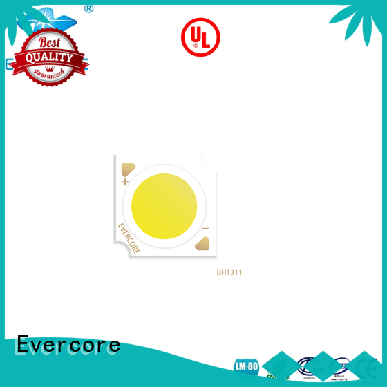 Evercore professional commercial lighting cob supplier for wholesale