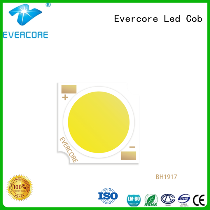 Evercore bh1917 led downlight kit factory for sale