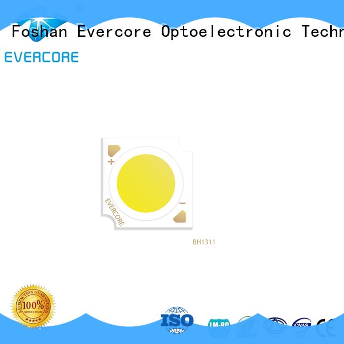Evercore cob downlight cob overseas market for distribution
