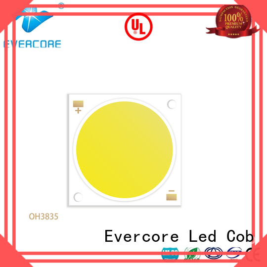 Evercore best quality buy outside lights from China for lighting