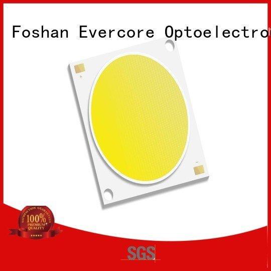 Wholesale modules cob Cold light Evercore Brand