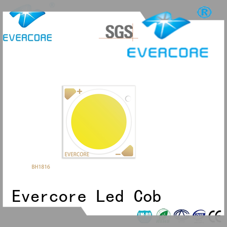 Evercore front Led Cob Chip manufacturer for lighting