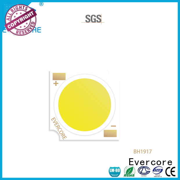 Evercore bh1917 led downlight kit factory for distribution