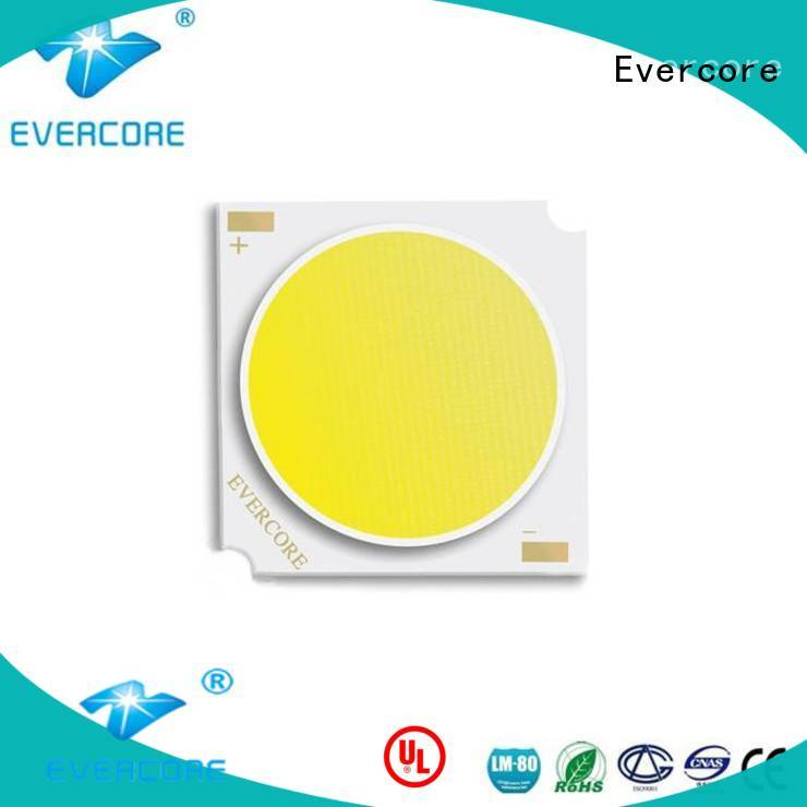 Evercore meat cob led light customized for distribution