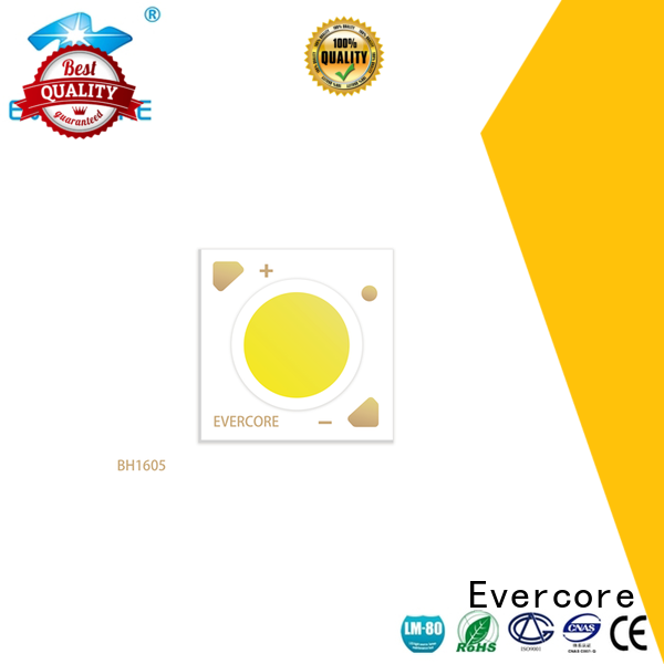 Evercore affordable downlight cob customized for sale