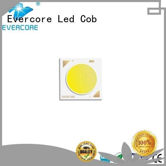Evercore long lifespan cob led 3v bk1914 for sale
