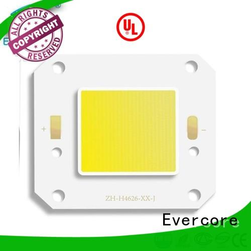 Evercore best quality outside yard lights from China for importer