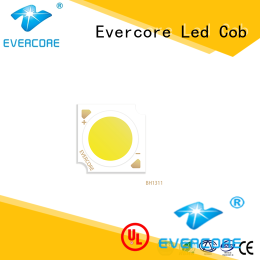 Evercore spot downlight cob customized for distribution