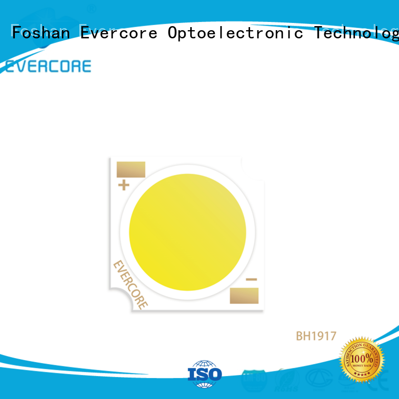 Evercore bh1917 rgb cob led manufacturer for distribution