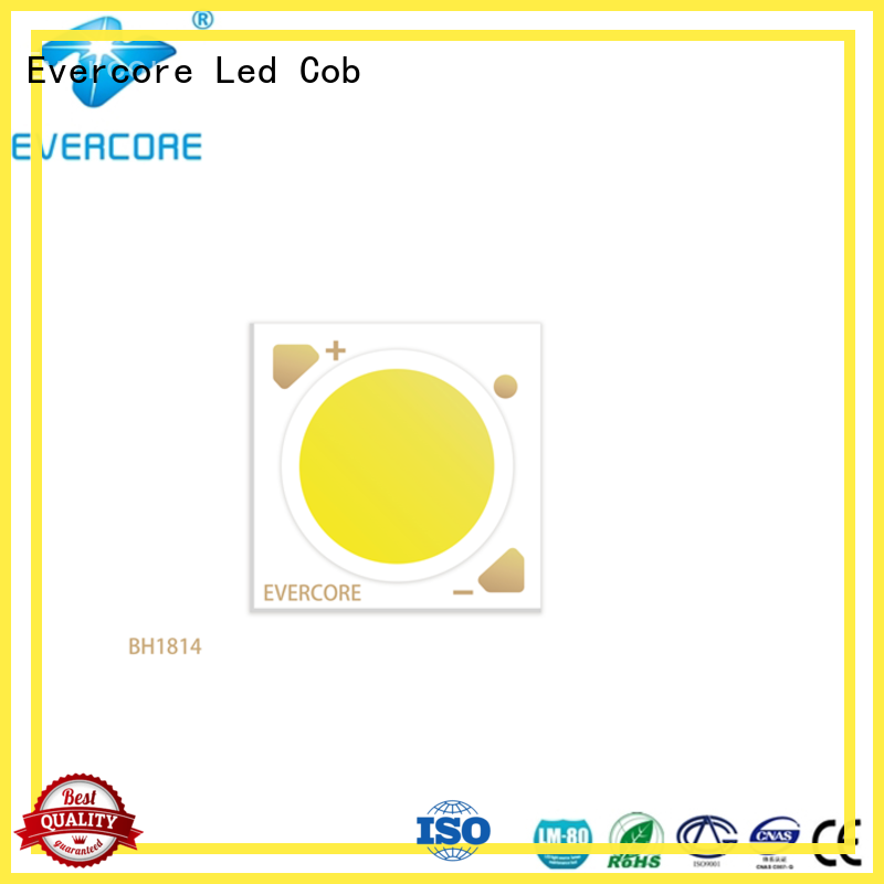 advanced technology downlight cob bh16105 customized for sale