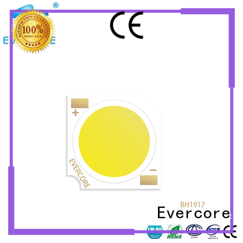 Evercore hotel leds modules customized for wholesale
