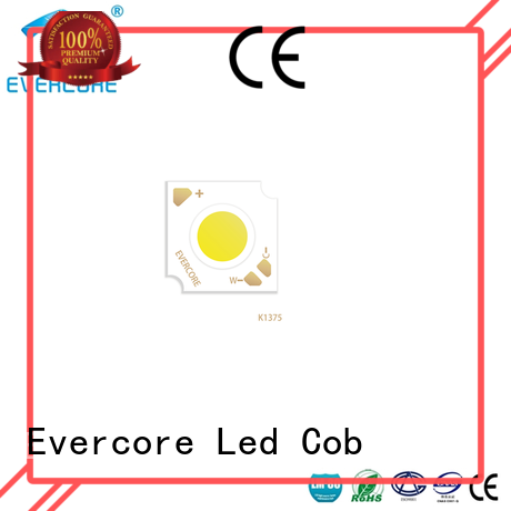 Evercore long lifespan 2 color led manufacturer for sale
