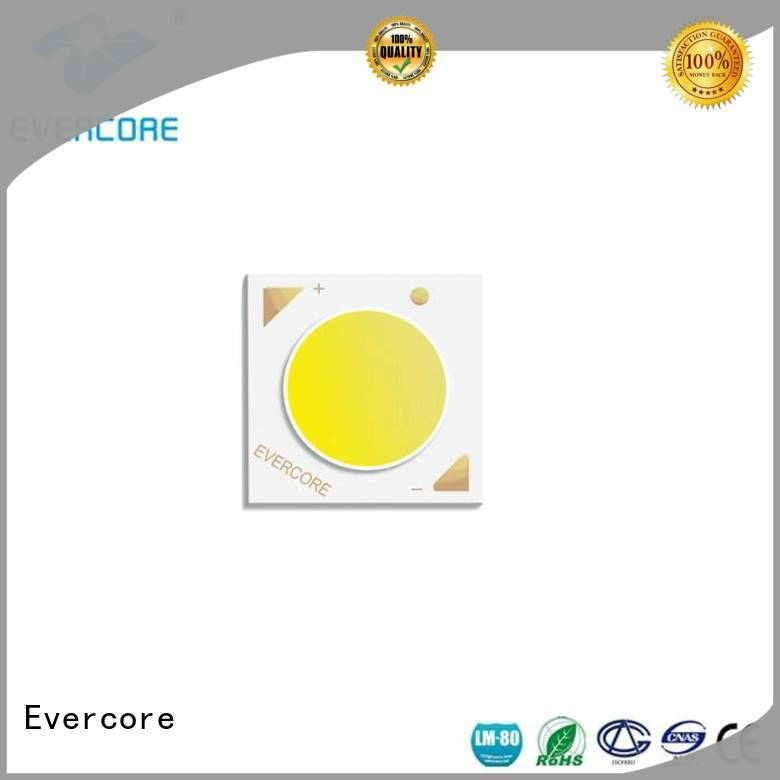 Evercore track downlight cob customized for sale