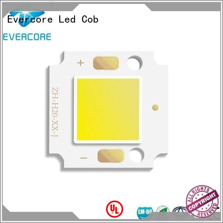 LED COB for outdoor small flood light /Garden lamp (OH2011) 10W