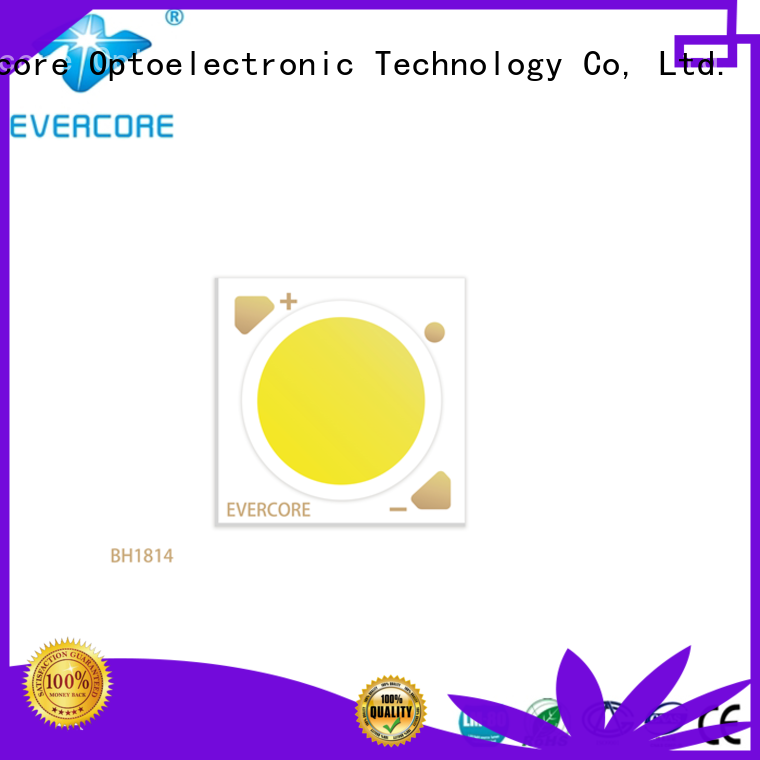 Evercore green rgb cob led factory for distribution