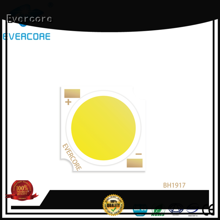 Evercore professional leds modules customized for sale