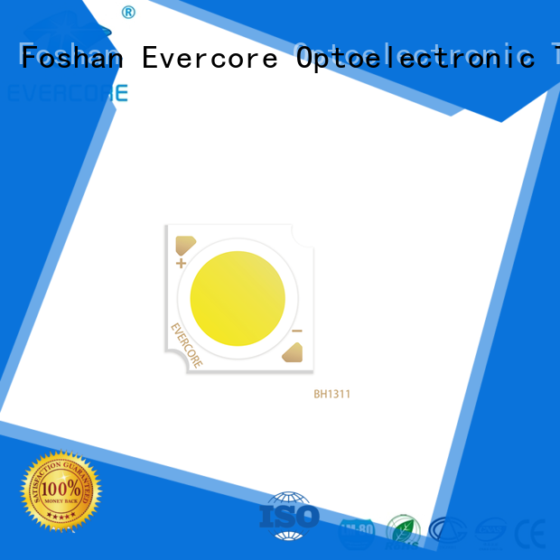 Evercore professional commercial lighting cob supplier for sale