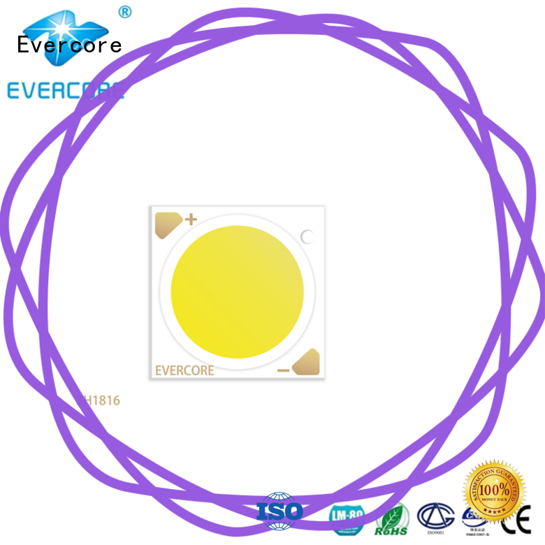 Evercore affordable led downlight kit factory for sale
