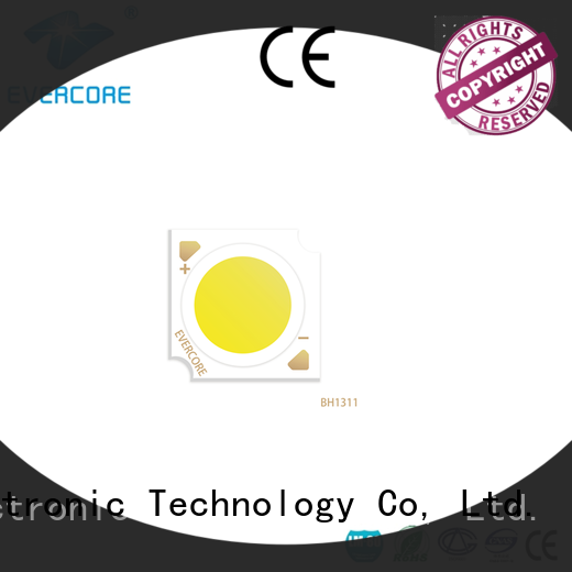 Evercore affordable downlight cob overseas market for distribution