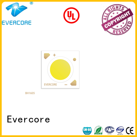 Evercore hot selling cob led kit Guangdong for merchant