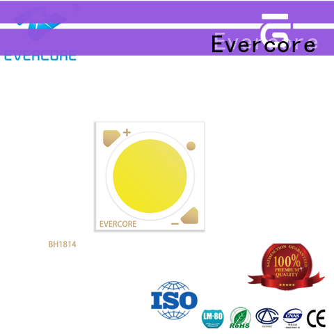 Evercore advanced technology downlight cob factory for distribution