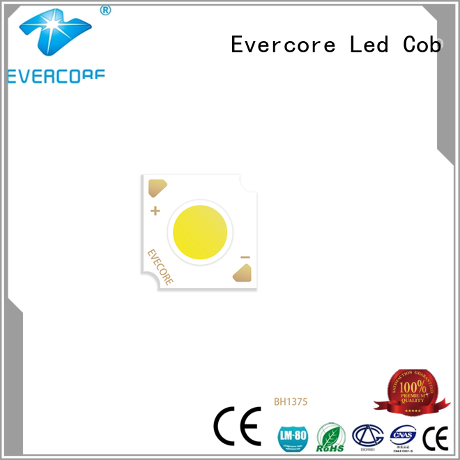 Evercore cd7947 automotive led producer for merchant
