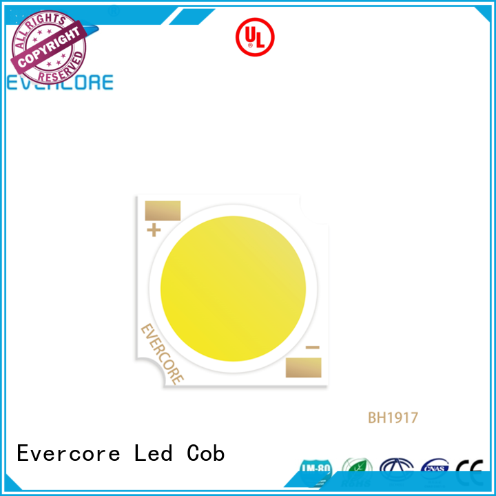 Evercore led chip cob from China for sale
