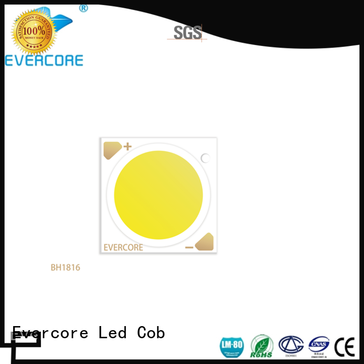 Evercore advanced technology led downlight kit overseas market for distribution