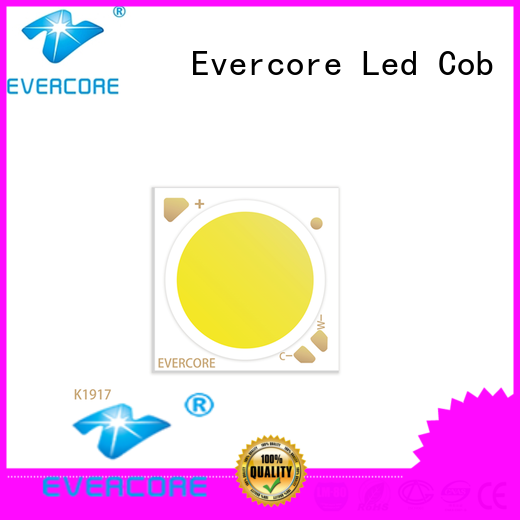 Evercore long lifespan led color manufacturer for distribution